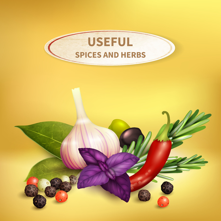 Colorful realistic background with useful herbs and spices such as garlic, rosemary, pepper, bay leaf, olives vector illustration.
