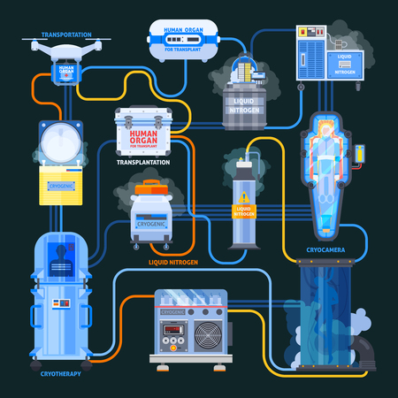 Cryonics flat flowchart, equipment with liquid nitrogen and human organs for transplantation on black background vector illustration Illustration