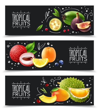 Set of horizontal banners exotic tropical fruits with design elements isolated on chalk board background vector illustration