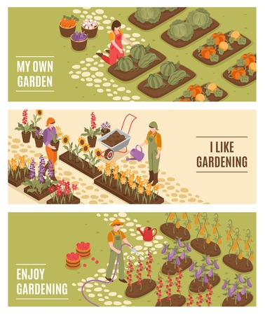 Gardening isometric horizontal banners set with flowers and fruit symbols isolated vector illustration 向量圖像