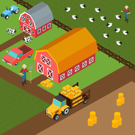 Colorful isometric 3d background with farmers grazing cows and sheep near shed with hay vector illustration Illustration