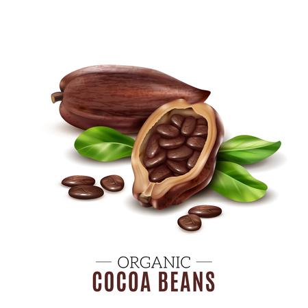 composition réaliste de cacao coloré avec le signe de beurre de miel organique et haricots illustration vectorielle