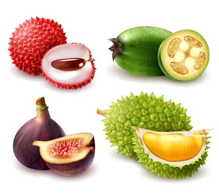 Set of realistic exotic fruits including lychee, feijoa, fig and durian isolated 3d vector illustration