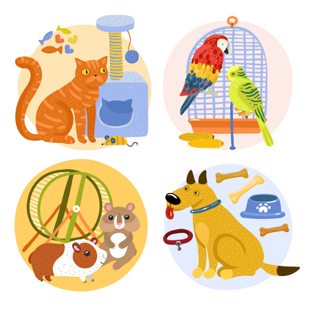 Pets design concept including cat with toy, parrots near birdcage, rodents, dog with bones isolated vector illustration  Illustration
