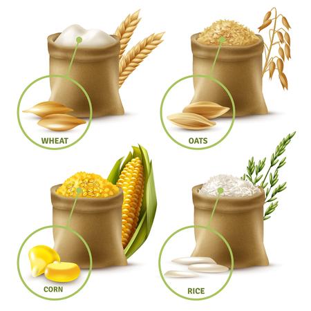 Zestaw zbóż rolniczych, w tym worki z mąką pszenną, owsem, kukurydzą i ryżem na białym tle ilustracji wektorowych