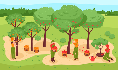 Gardening and harvest isometric concept with trees fruit and people symbols vector illustration