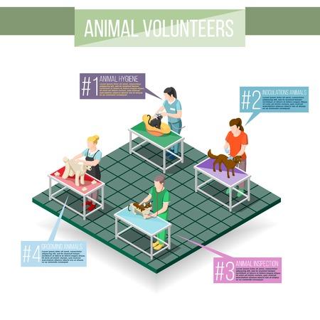Women volunteers and animals during inoculations, grooming, veterinary inspection, hygiene procedures. Isometric info-graphics vector illustration.