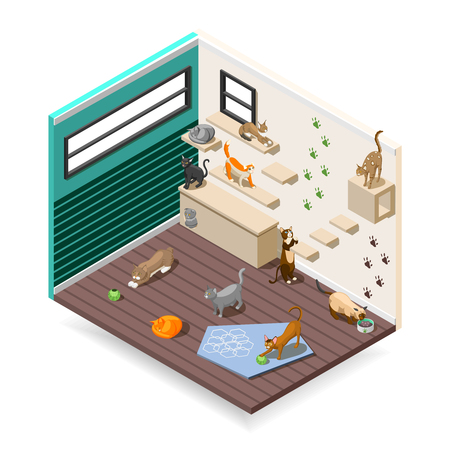 Home for purebred cats with various facilities for sleep, games, nutrition  isometric composition vector illustration Ilustração