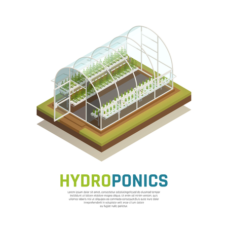 Greenhouse hydroponics isometric composition