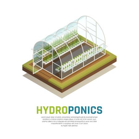Composition isométrique de la culture hydroponique à effet de serre