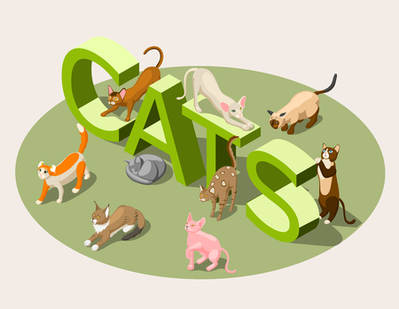 Purebred cats of various breeds and green typographic 3d lettering isometric background vector illustration