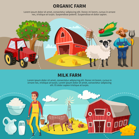 Two horizontal farm cartoon composition set with organic and milk farm headlines vector illustration