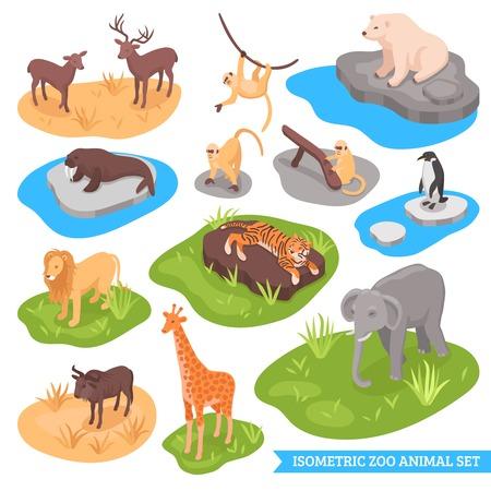 Isometrische dierentuin decoratieve pictogrammen instellen