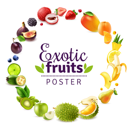 Exotic fruits frame illustration Illustration
