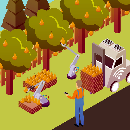 Agricultural robots isometric composition with outdoor scenery and pear trees with electronically controlled manipulators collecting fruits vector illustration Çizim