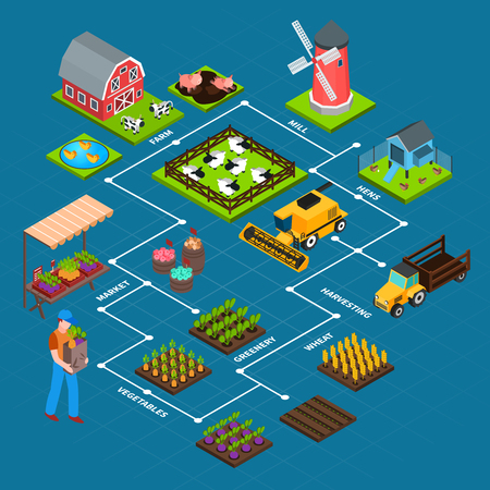 Isometric flowchart with farmer mill barn harvest machinery and domestic animals on blue background 3d vector illustration
