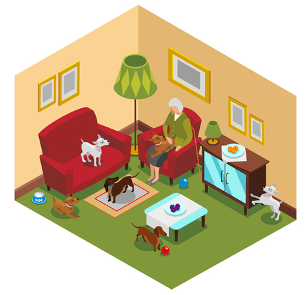 Ordinary life of old lady and small dogs, isometric composition with home interior, vector illustration