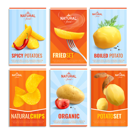Composition of six cards with images of boiled potato fried spicy and natural chips  realistic vector illustration   Illustration
