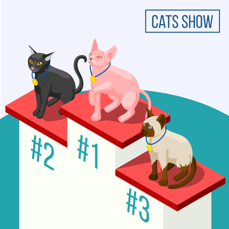 Cats show isometric composition including animals winners with medals on pedestal vector illustration