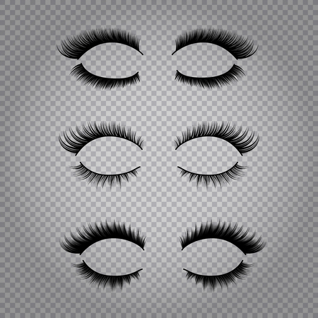 Set of realistic false lashes for upper and lower eye lids isolated on transparent background vector illustration