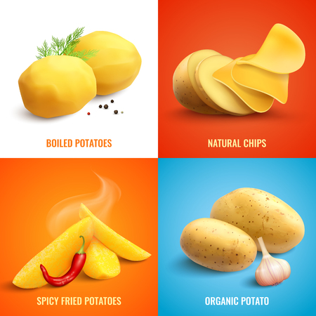 Vegan realistic 2x2 design concept set of organic and boiled potato spicy fried potatoes and natural chips vector illustration Illustration