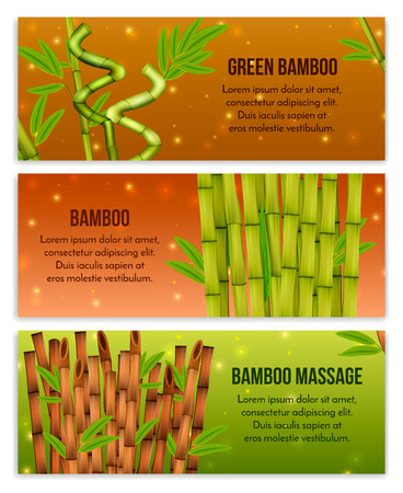 Green bamboo interior decorative elements and hollow canes massage tools 3 realistic horizontal banners isolated vector illustration