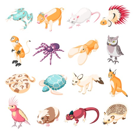Exotic pets isometric icons set of rabbit turtle parrot lynx rat frog spider monkey hedgehog lizard snake owl cartoon characters vector illustration