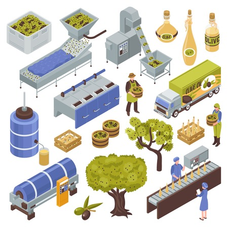 Olive production process isometric set with fruit harvesting transportation oil extraction filtering storage packing distribution vector illustration Banco de Imagens - 102305328