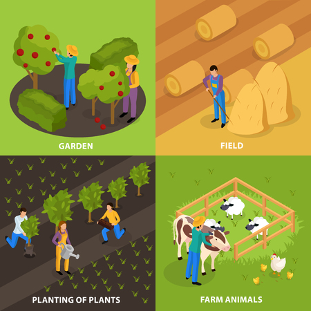 Ordinary farmers life isometric 2x2 design concept with colourful outdoor compositions of household and farmstead activities vector illustration