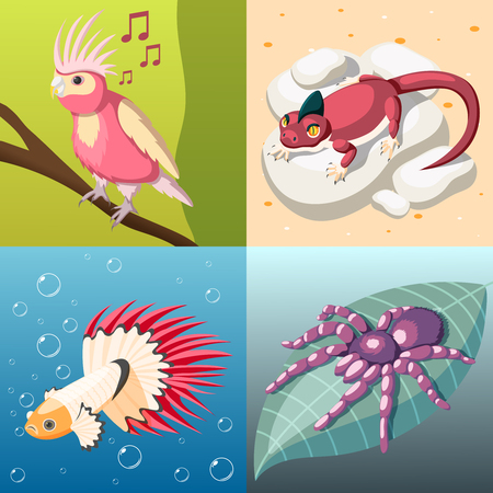 Exotic pets 2x2 design concept set of reptile fish insect bird isometric square icons cartoon vector illustration Illustration
