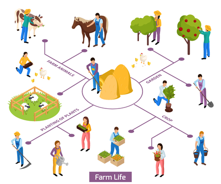 Ordinary farmers life isometric composition flowchart with isolated human characters and icons of plants and animals vector illustration