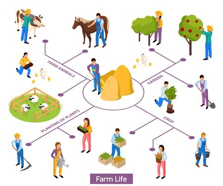 Organigramme de composition isométrique de la vie des agriculteurs ordinaires avec des personnages humains isolés et des icônes de plantes et d'animaux vector illustration Vecteurs