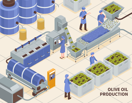 Olive oil production modern automated facility line isometric composition with collected fruit pressing extraction process vector illustration Ilustracja