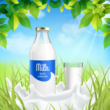 Natural dairy products realistic composition with bottle and full glass  milk in sunny meadow grass vector illustration