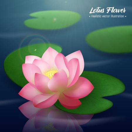 Roze lotusbloem met twee brede schijfvormige bladeren die op water realistische achtergrondaffiche vectorillustratie drijven