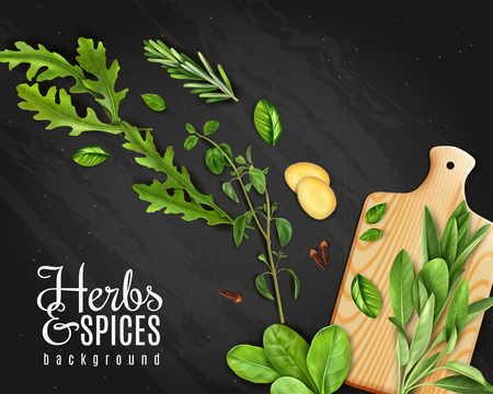 Green leafy vegetables herbs promotion chalkboard background with arugula rosemary spinach ginger on cutting board vector illustration Illustration