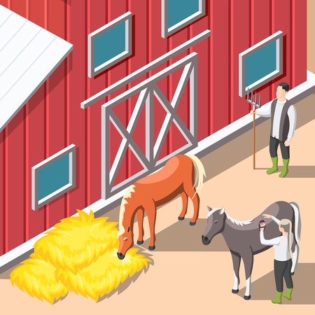 Horse breeding Isometric background with staff caring for horses and supplying hay forage in stable interior vector illustration
