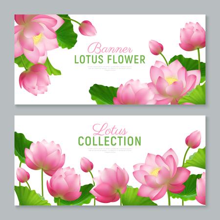 Hermosa colección de flores de loto realista 2 banners horizontales ornamentales con letras sobre fondo blanco ilustración vectorial Ilustración de vector