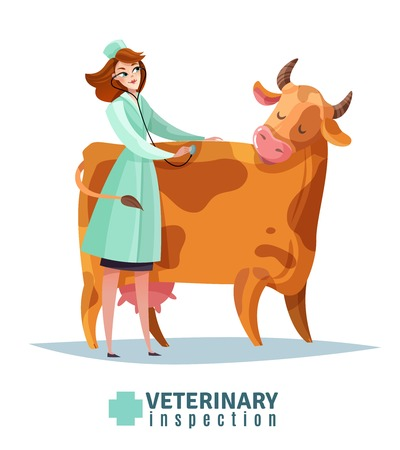 Veterinary inspection composition vet doctor with stethoscope during cow examination flat vector illustration