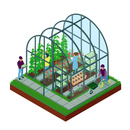 Greenhouse isometric composition with glasshouse facility workers pushing wheelbarrow planting inspecting seedlings growing flowers vegetables vector illustration