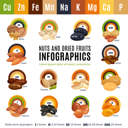 Flat design infographics presenting information about nuts and dried fruits and their daily norm isolated vector illustration Illustration