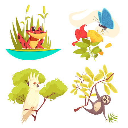 Animals jungle design concept with frog in reeds, butterfly on flower, parrot and sloth isolated vector illustration