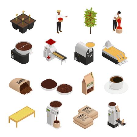 Izometryczne ikony produkcji kawy z pojedynczymi obrazami kawowych zadziorów szlifierek ilustracji wektorowych ludzi pracujących