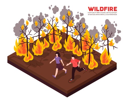 Wildfire isometric composition with people running away from flame of burning forest trees vector illustration