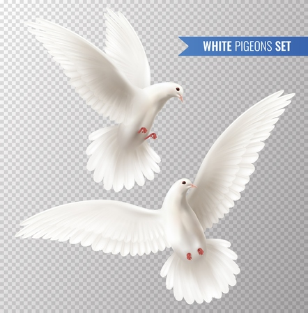 White dove transparent set with peace symbols realistic isolated vector illustration Imagens - 108593080