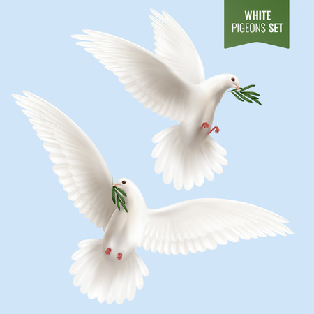 White dove set with peace and olive branch symbols realistic isolated  illustration