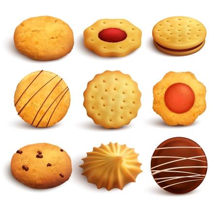 Ensemble de biscuits de variété cuits à partir de farine de blé isolé sur fond blanc dans une illustration de style réaliste