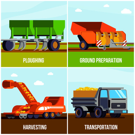 Potato production flat design concept with ploughing ground preparation harvesting and transportation isolated vector illustration