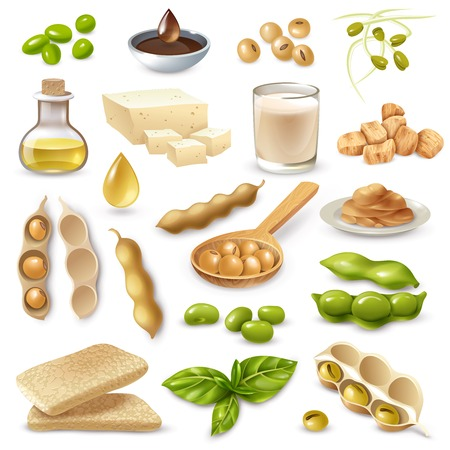 Set of soy food products with ripe beans and green leaves on white background isolated vector illustration