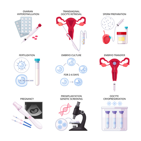 Isolated flat in vitro fertilization IVF icon set with fertilization pregnancy embryo culture transfer and other descriptions vector illustration Çizim